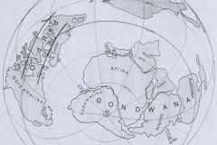 Devon (Devonian) 410 Mio. Jahre
